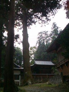 kabasaki1111059.jpg