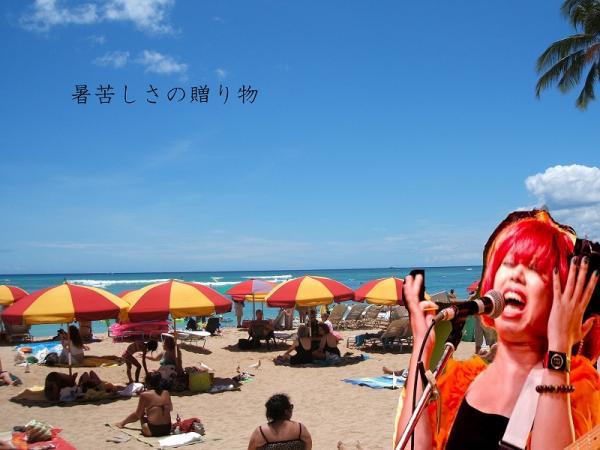 hawaii004.jpg