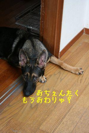 001dshfeusai.jpg