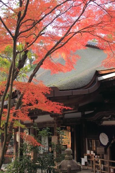 201111石山寺 ②