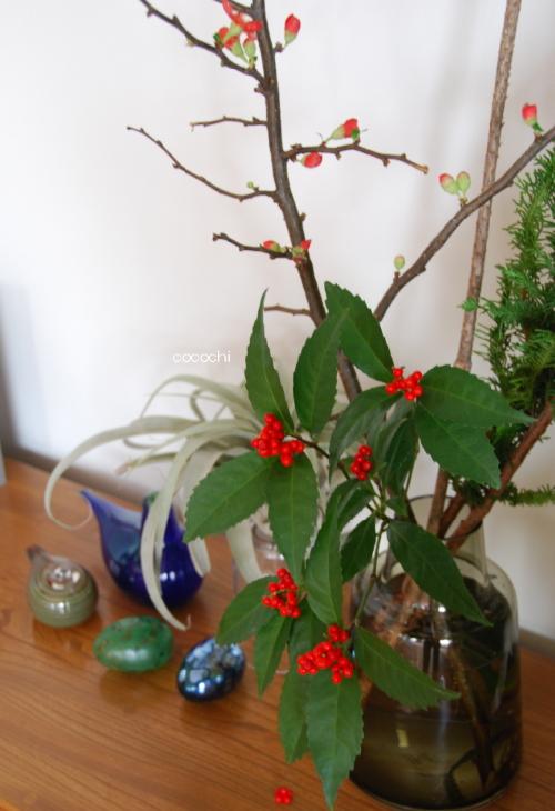 20131227_リビングの花