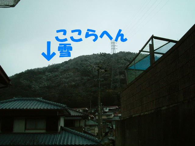 2012_02180023.jpg