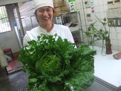 2010_0614白菜と小川君