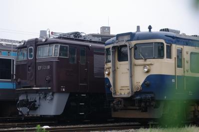 IMGP9451.jpg