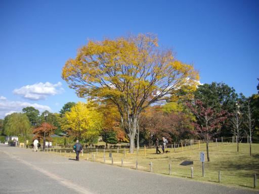 駿府公園の紅葉2