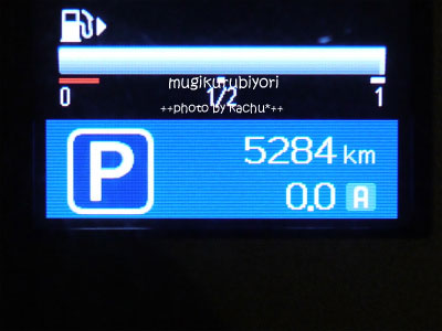 sP1060355.jpg