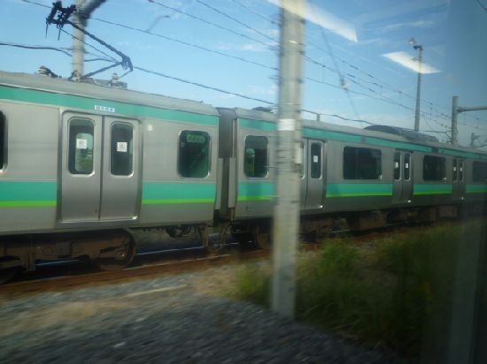 P1130952.jpg