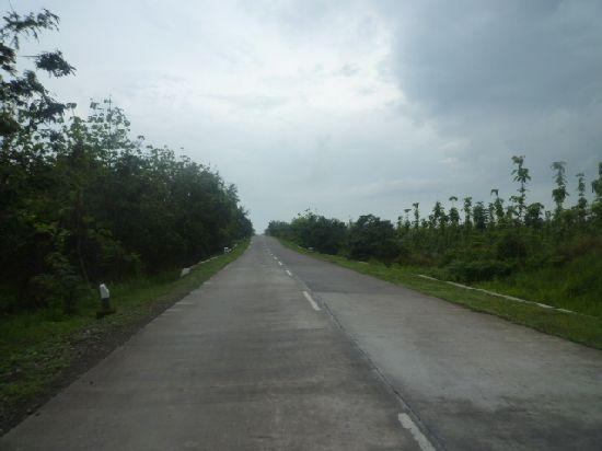P1140145.jpg