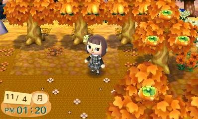 秋の芝生3修正後