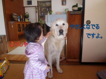 11281-1_convert_20111129002911.jpg