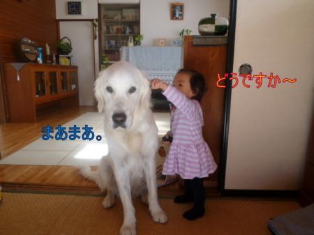 11282-1_convert_20111129003250.jpg