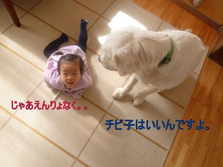11284-1_convert_20111129003408.jpg