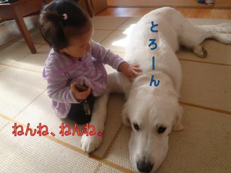 11287-1_convert_20111129003503.jpg