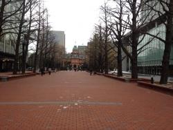 写真 2014-11-17 14 00 50