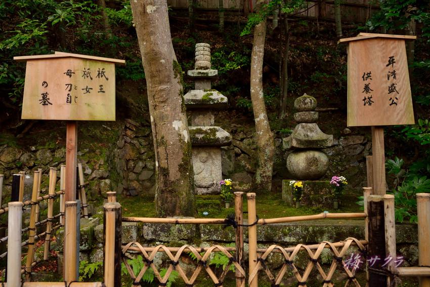 京都14(8)変更済