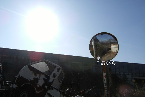 20130204_02.jpg