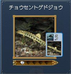 20100811_06.jpg