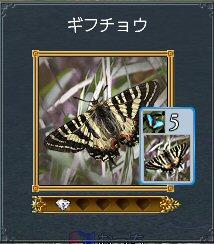 20100811_29.jpg