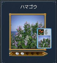 20100811_30.jpg