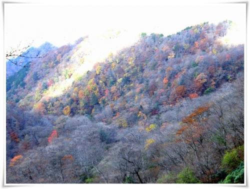 塔ノ岳・丹沢山