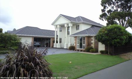 NZ4-2.jpg