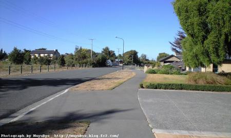 NZ4-4.jpg