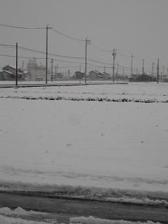 雪の日12.2.2