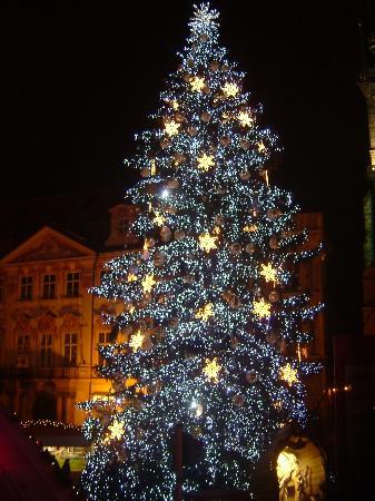 christmas-tree-in-old.jpg