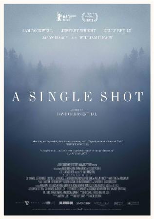 singleshot_1.jpg