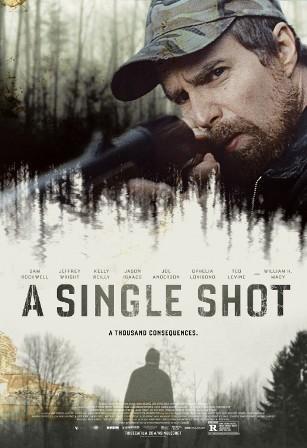 singleshot_2.jpg
