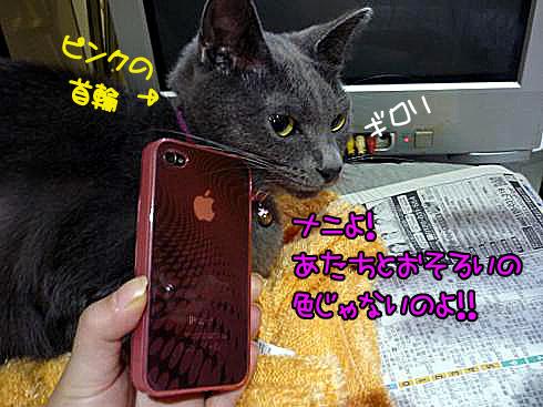ゆきじとiPhone