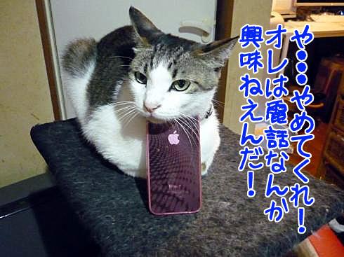 マニーとiPhone