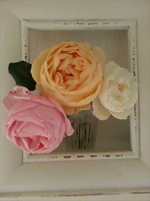 20141206香りのバラ01_R