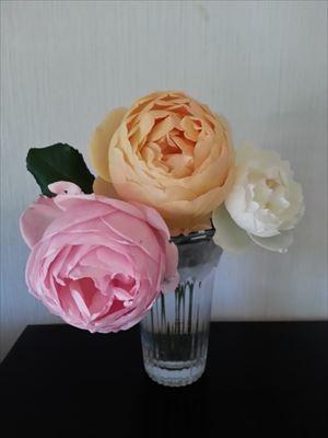 20141206香りのバラ02_R