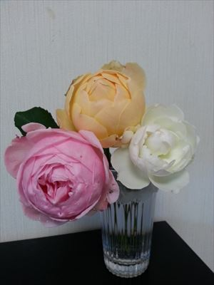 20141206香りのバラ03_R