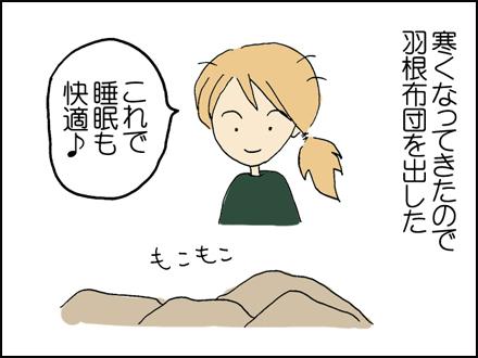 176羽根布団-1