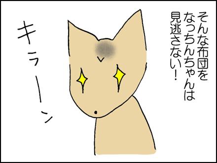 176羽根布団-2