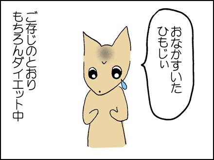 177ひもじぃ-2