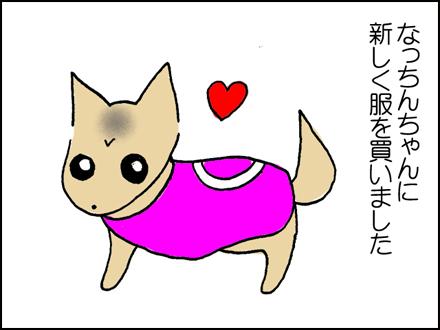 200盲導犬の服-1