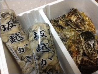 坂越牡蠣1