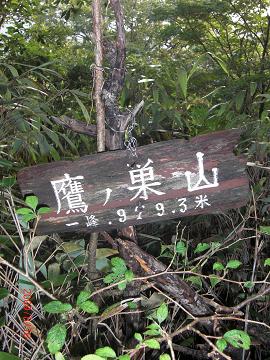 2009.8.16 鷹ノ巣山 (10)s