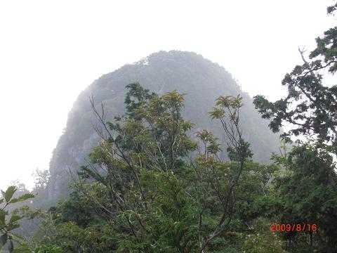 2009.8.16 鷹ノ巣山 (29)s