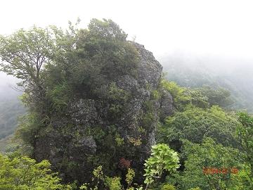 2009.8.16 鷹ノ巣山 (41)s