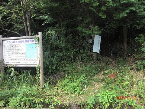 2009.9.13酒呑童子山 (29)s