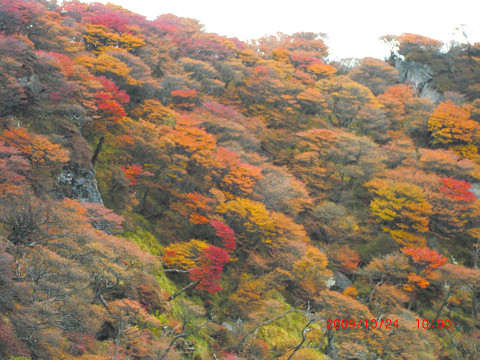 2009.10.24岳麓寺コース (26)s