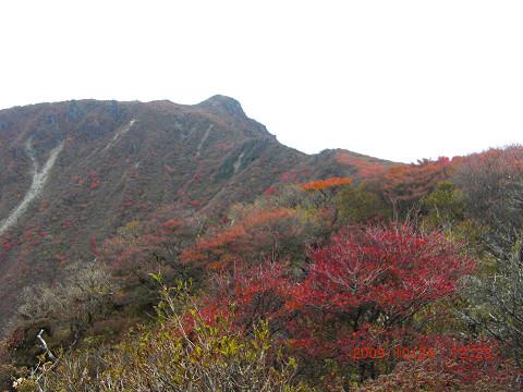 2009.10.24岳麓寺コース (55)s