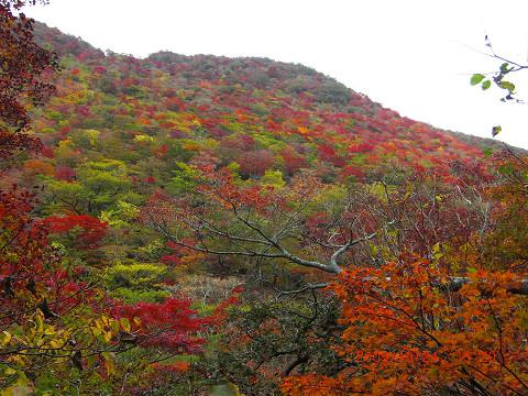 2009.10.24岳麓寺コース (88)s