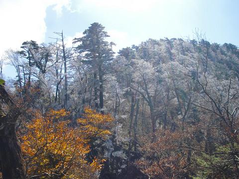 2009.11.3傾山 (68)s