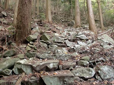 209.11.8犬が岳・求菩堤山. (67)s