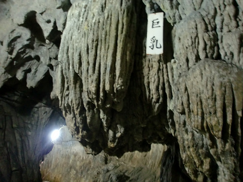 2009.11.14貫山 平尾台. (96)s